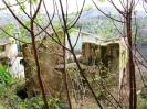 12. La Natura ed il verde della vegetazione s'impossessano dell'antico spazio urbano