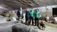 Un Centro Regionale per le emergenze veterinarie alla Fondazione MiDA